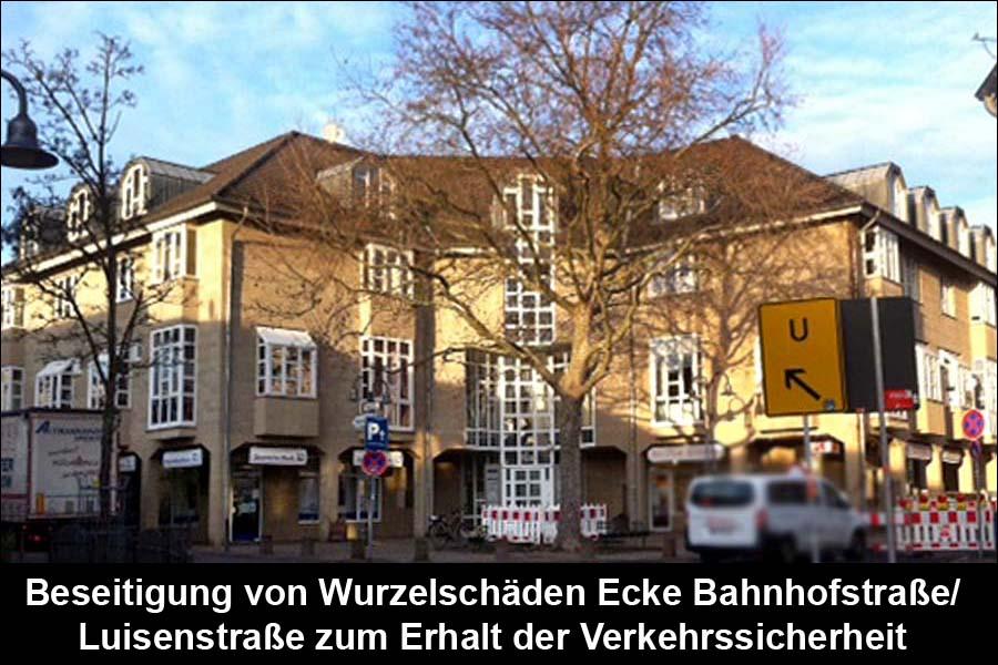 Beseitigung von Wurzelschäden Ecke Bahnhofstraße/Luisenstraße zum Erhalt der Verkehrssicherheit